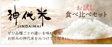 神代米 美味しい お米 千葉県産 もちもち ふっくら 安全