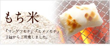 神代米 美味しい もち米 千葉県産 もちもち ふっくら 安全