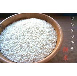 もち米 おいしい モチモチ マンゲツモチ 千葉県産