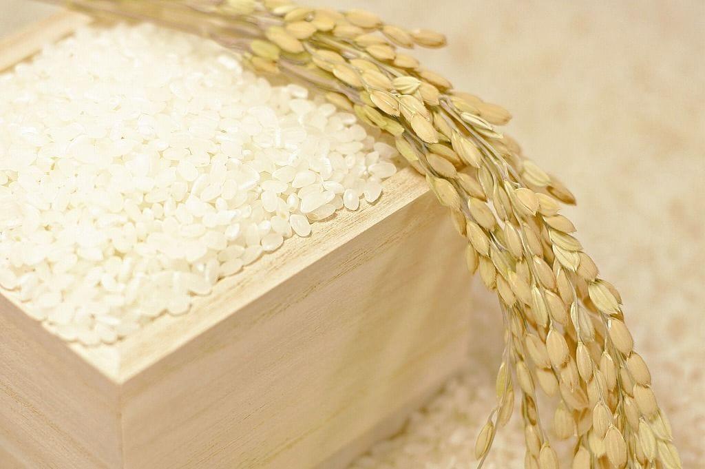 安心安全のお米